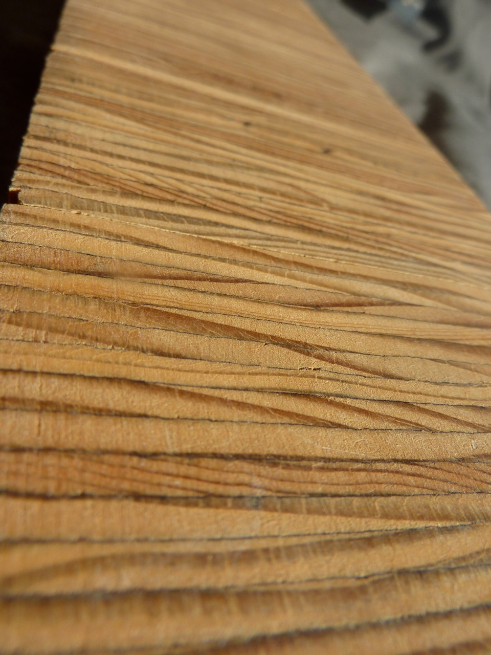 Bamboo Flooring Sample Viewing Gallery
