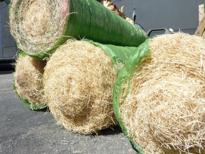 curlex rolls