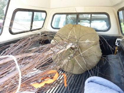 tree arrives
