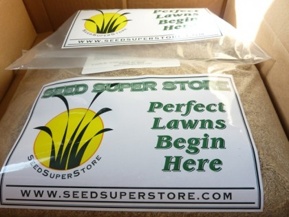 seed is here