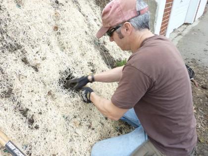 digging thru curlex