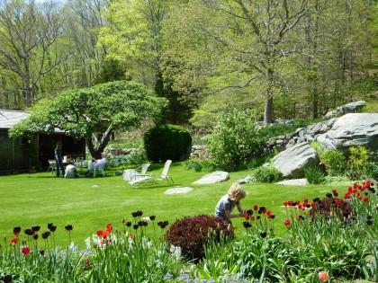 bix 'n tulips 'n lawn