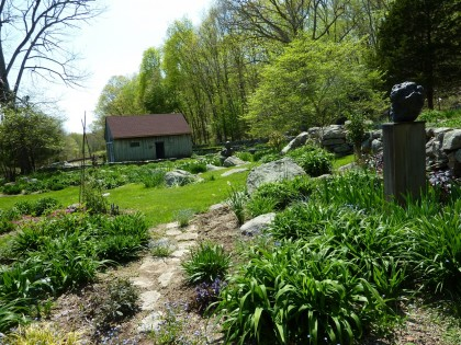 the daylily garden