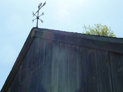 weathervane on the sheep barn