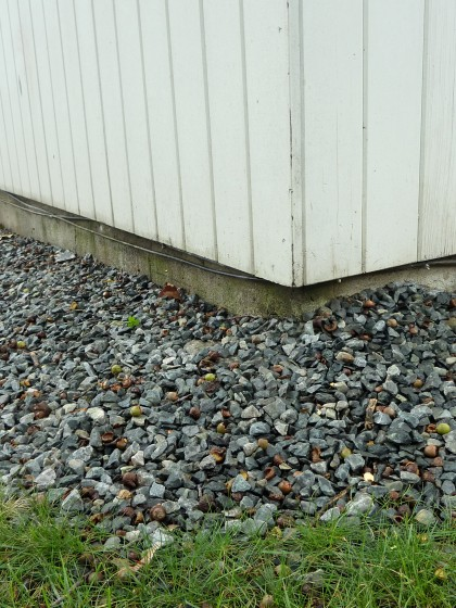 buffer around house needs edging and beach pebbles