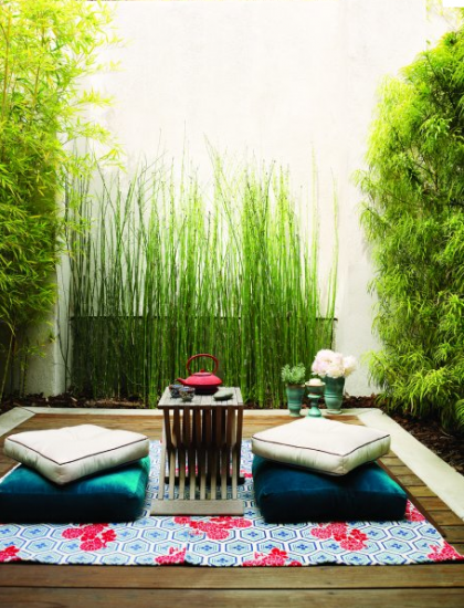 equisetum hymale | silive.com: Tiny patios are big on setting the mood