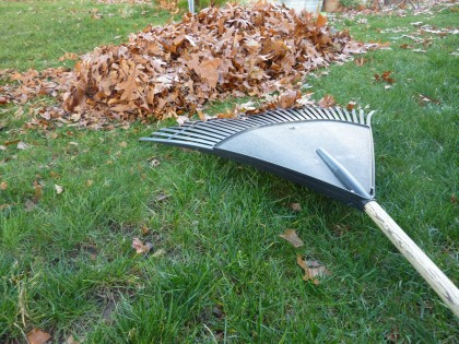 rake leaves into a pile