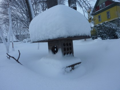 snow-capped lantern