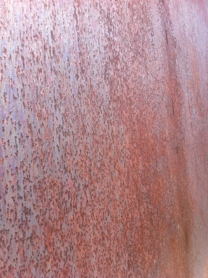 storm king | corten steel closeup