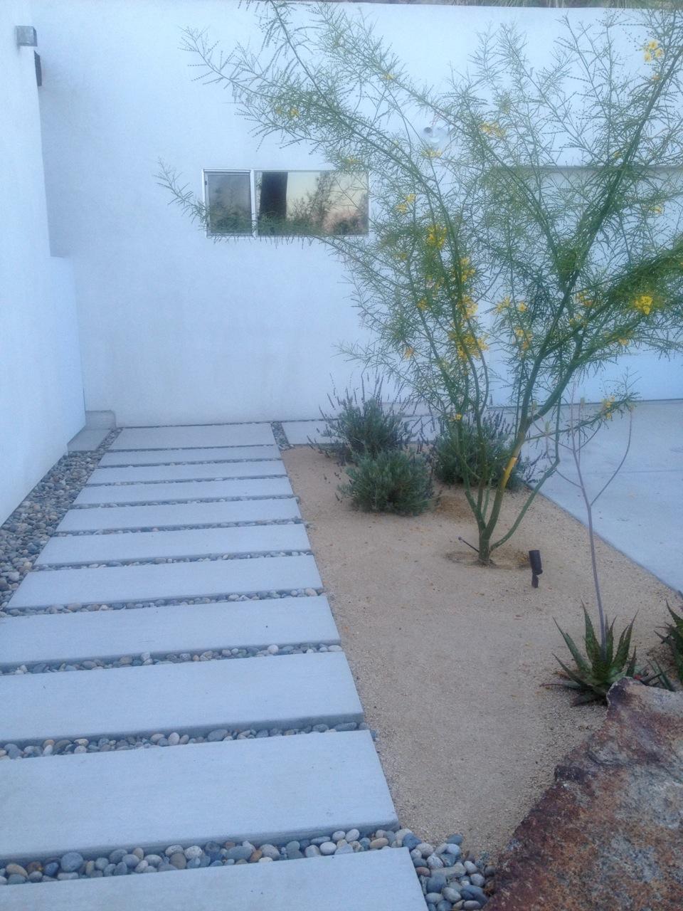 Polished Concrete Patio