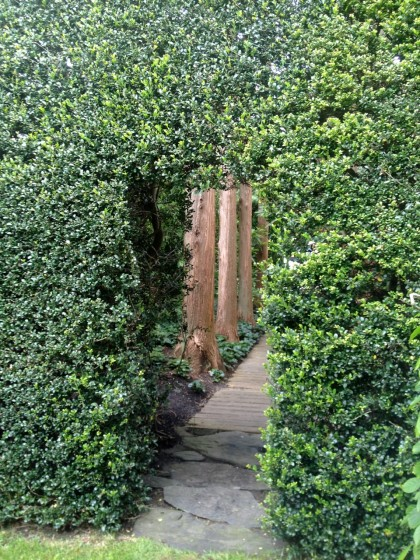 take a peek through the hedge