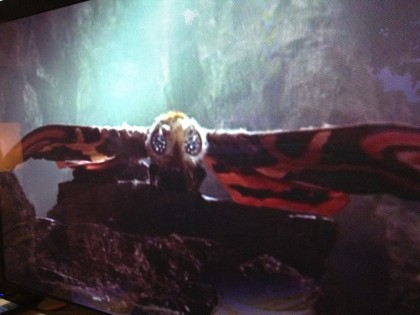 a shot of mothra from last night's movie