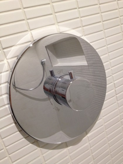 the shiny shower controls